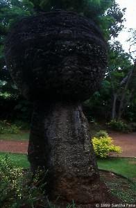 Small upright Latte Stone, Guam.
