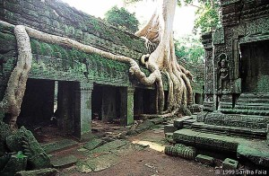 Nature and architecture in harmony in Ta Prohm.