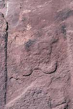 Views of a second representation of a face at Tiahuanaco showing exuberant mustachios or beard (There is a monochrome image in Fingerprints.)