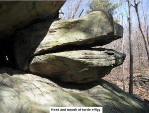 Head and mouth of turtle effigy