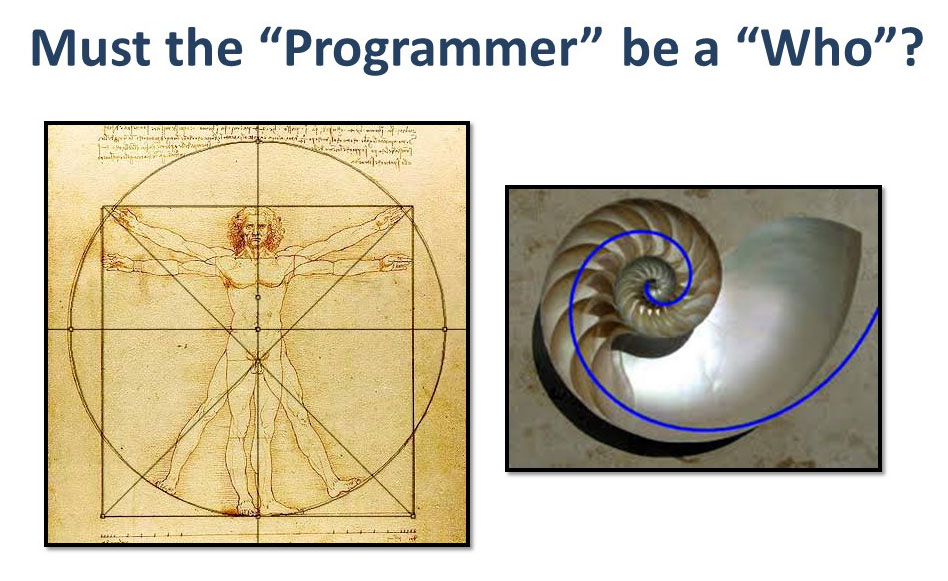 bunzelt1-programmer-who