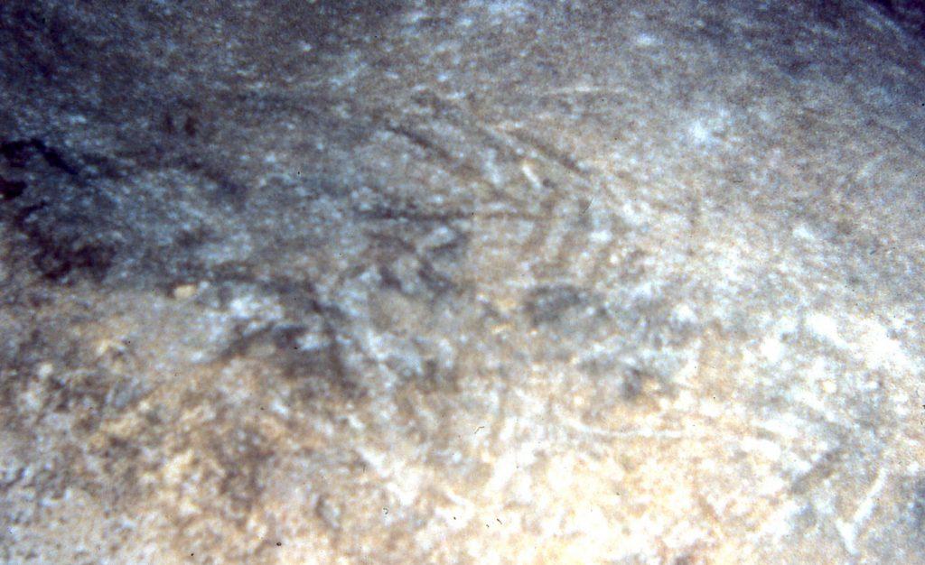 Tectiform images in Ghar Dalam © Emmanuel Anati