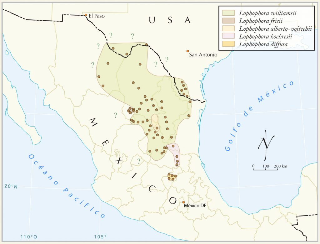 Distribution of peyote cacti in Mexico, 2008. CC BY 3.0